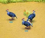 Игра Веселая ферма 3: Мадагаскар