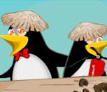 Пингвины на двоих