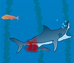 Игра симулятор акулий укус